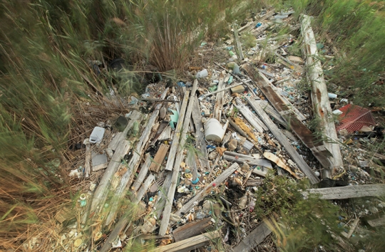 Garbage piled up on the bank.