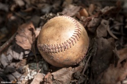 A Baseball Graveyard in Queens
