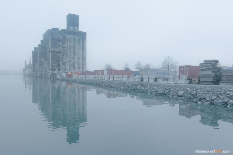fog-001