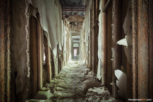 North Brother Island_Abandoned NYC_Will Ellis_18