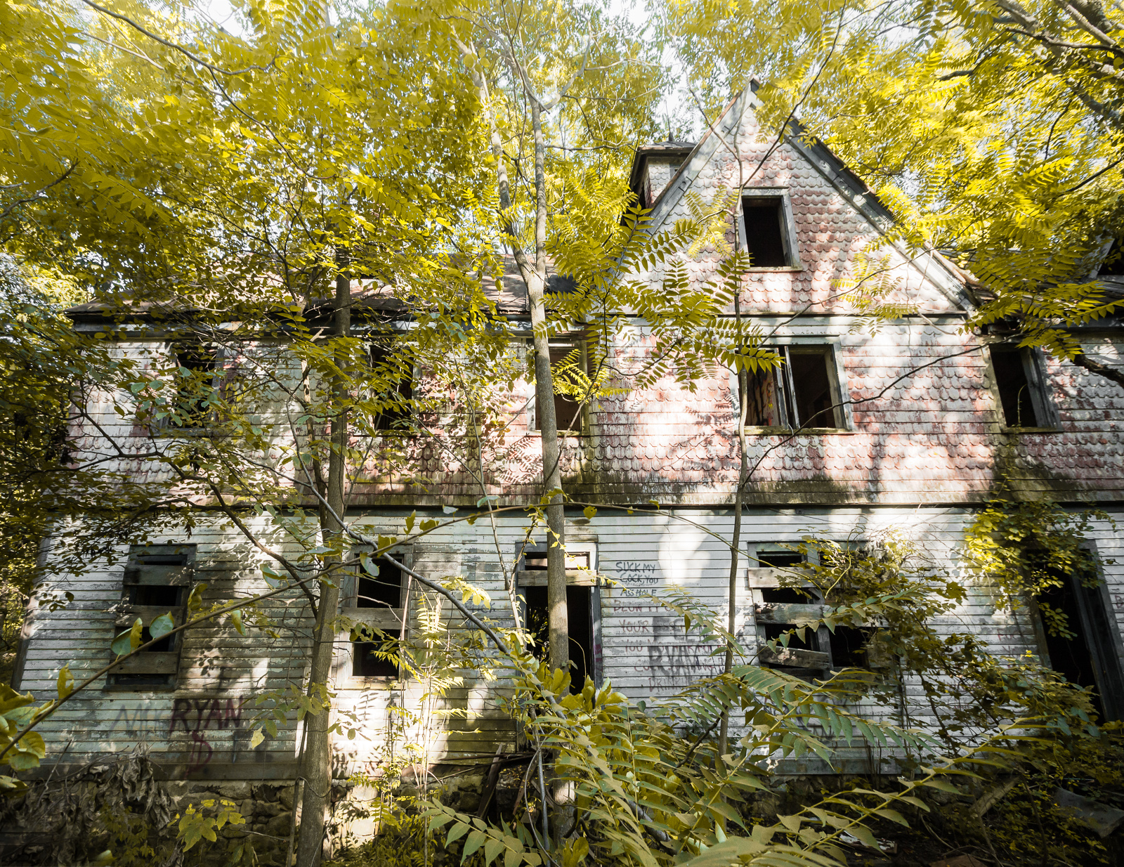 reading between the lines of the profanity house | abandonednyc