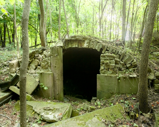 Will Ellis_Old Dutch Cemetery_AbandonedNYC-8