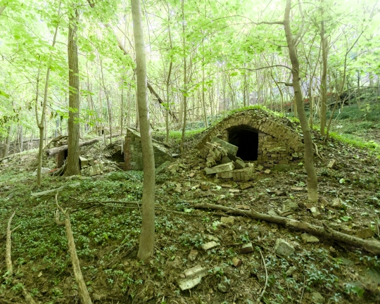 Will Ellis_Old Dutch Cemetery_AbandonedNYC-9
