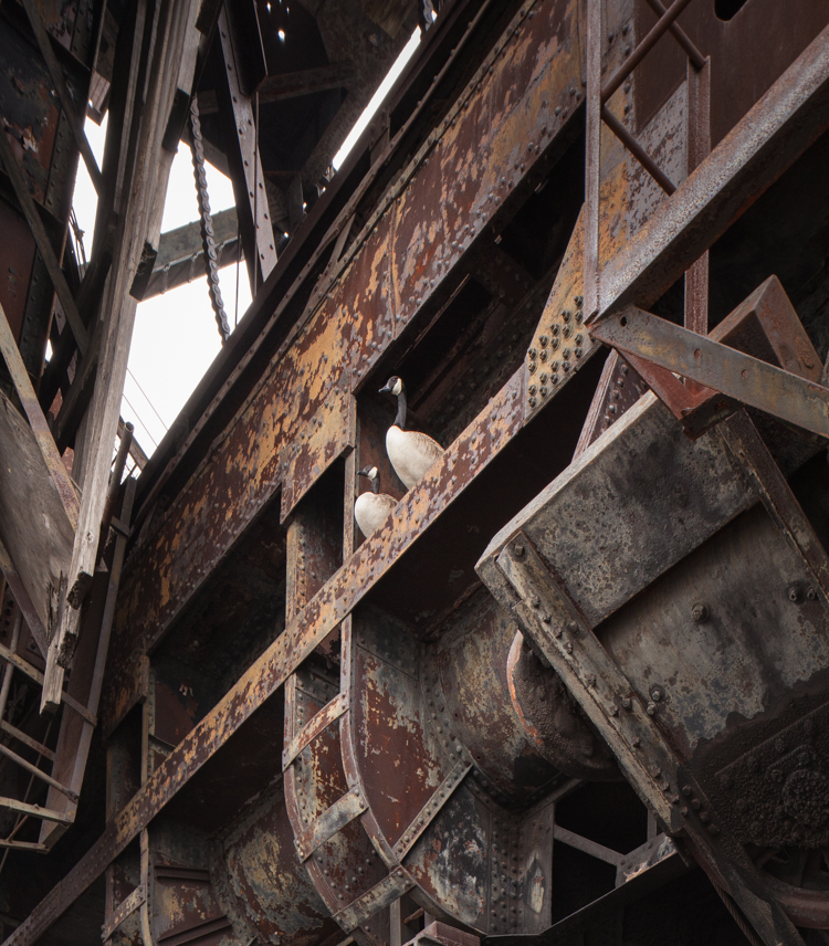 Abandoned NYC_McMyler Coal Dumper_Will Ellis-9